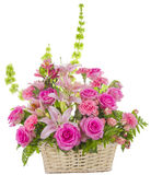 Pink Roses Arrangement on White Stock Images