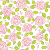 Pink roses (background). Seamless background of pink roses Stock Photos
