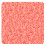 Pink roses background. Royalty Free Stock Photography