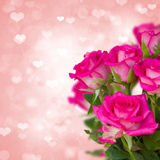 Pink roses on background with hearts Royalty Free Stock Photography