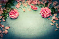 Pink roses background on retro toned shabby chic wood, top view, retro toned Stock Photo