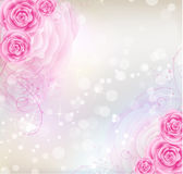 Pink roses background Stock Images
