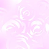 Pink roses background vector Royalty Free Stock Images