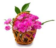Pink roses in basket Royalty Free Stock Photos