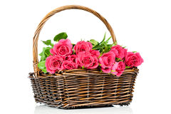 Pink roses in the basket Stock Images