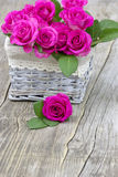 Pink roses in a basket Royalty Free Stock Images