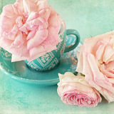 Pink roses. Beautiful fresh pink roses in a cup  on a blue background Stock Photography