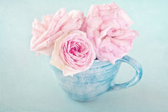 Pink roses. Beautiful fresh pink roses in a cup on a blue background (pastel colors Royalty Free Stock Photo