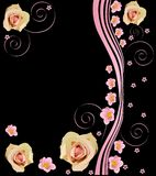 Pink roses on black background illustration Stock Images