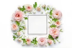 Pink roses and blank card. On white background royalty free stock photos
