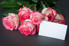 Pink roses and blank tag for greeting message. Bouquet of pink roses and empty tag with copy space. Closeup view. Mothers day, Women`s day or other holidays gift royalty free stock image
