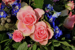 Pink roses and blue larkspur Stock Photos