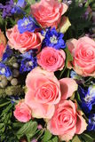 Pink roses and blue larkspur Royalty Free Stock Photo