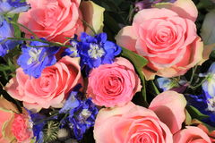 Pink roses and blue larkspur Royalty Free Stock Image