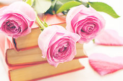 Pink roses on a book Stock Image
