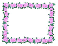 Pink Roses border. Pink Roses Garland Image and illustration composition for wedding invitation background, border or frame with copy space Stock Photo