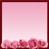 Pink Roses Border Frame Bottom Stock Photography