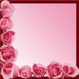 Pink Roses Border Frame Side Bottom. Pink roses frame border for card, copyspace, or scrapbook royalty free stock image