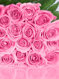 Pink roses bouquet. Bouquet of pink roses with reflection Stock Image