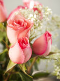 Pink roses bouquet Stock Photos