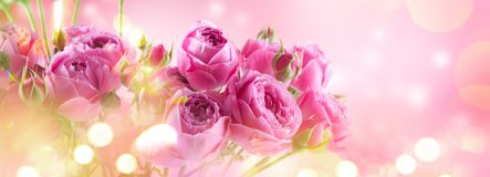 Free Pink Roses Bouquet, Blooming Roses. Rose Flowers Bunch Art Design, Nature. Holiday Gift, Bunch Of Roses Flower Royalty Free Stock Images - 166756949