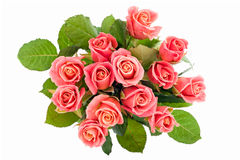 Pink roses bouquet Stock Photography