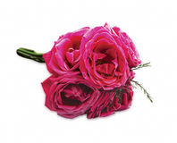 Pink roses bouquet isolated on white Stock Photography