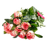 Pink roses bouquet on a white background isolated Stock Photography
