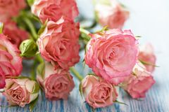 Pink roses bouquet on wooden table Stock Images