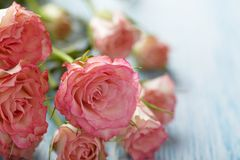 Pink roses bouquet on wooden table Stock Photos