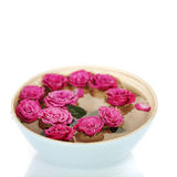 Pink roses in bowl Royalty Free Stock Photo