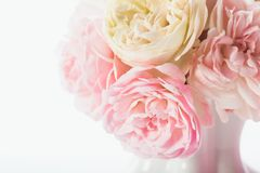 Pink roses bunch Royalty Free Stock Image