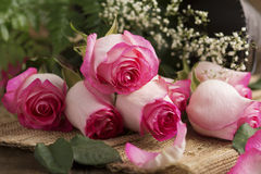 Pink Roses on Burlap Stock Image