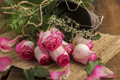Pink Roses on Burlap with Metal Bucket Stock Photos