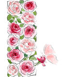 Pink roses with butterfly Royalty Free Stock Photos