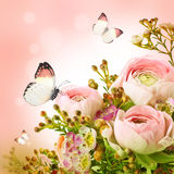 Pink roses and butterfly Royalty Free Stock Photography