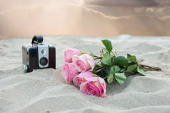 Pink roses and camera in sand Stock Images