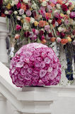 Pink roses centerpiece flower ball. Pink rose flower ball a large outdoor festive centerpiece on a white fence with a wall of flowers in the background A stock image