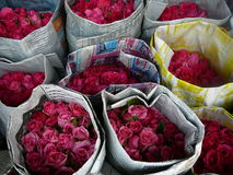 Pink Roses in Chinese Newspaper. Pink Roses are my favorite so couldn't help to stop and take a picture at the Bangkok Flower Mart in Thailand Stock Photo