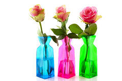 Pink roses in colorful vases Stock Photos