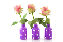 Pink roses in colorful vases Stock Image