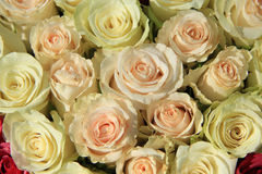 Pink roses in different shades in wedding arrangement Royalty Free Stock Photography