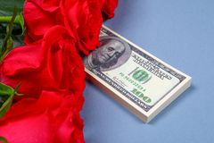 Pink roses with dollar bills instead of a gift. Template for March 8, Mother's Day, Valentine's Day. Pink roses with dollar bills instead of a gift. Template Stock Photos