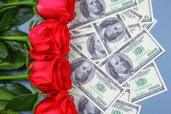 Pink roses with dollar bills instead of a gift. Template for March 8, Mother's Day, Valentine's Day. Pink roses with dollar bills instead of a gift. Template Stock Image