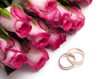 Pink roses with droplets and wedding rings Stock Images