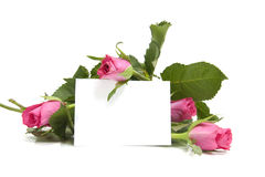 Pink roses and empty card Royalty Free Stock Photography