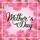 Pink roses floral decoration greeting card mothers day Royalty Free Stock Photos
