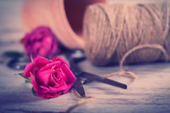 Pink roses with flower pot, rope scissors Stock Images