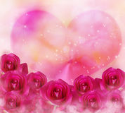 Pink roses flowers and big pink heart with bokeh and lens flare Stock Images