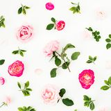 Pink roses flowers isolated on white background. Flat lay, Top view. Floral texture. Summer composition royalty free stock photo